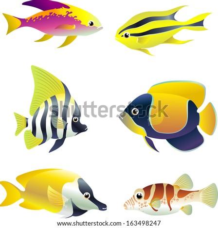 tropical reef fish set