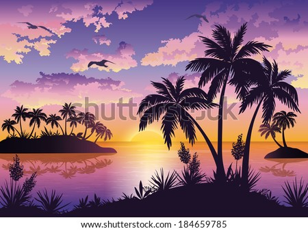 tropical sea landscape  black