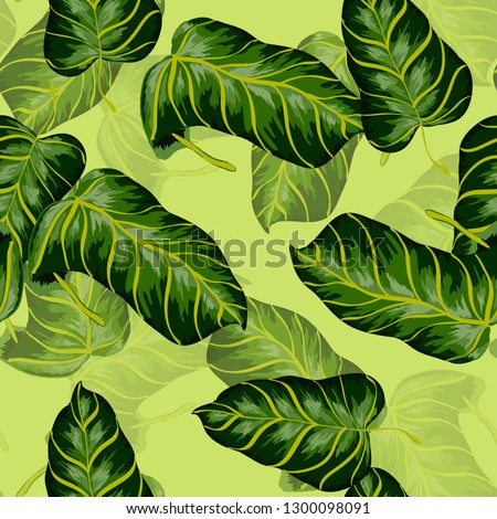 Tropical seamless pattern with palm tree leaves. Background with banana leaves. #1300098091