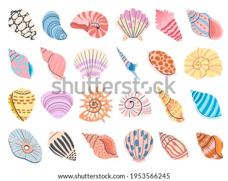Tropical seashell. Cartoon clam, oyster and scallop shells. Colorful underwater conches of mollusk and sea snail. Ocean shellfish vector set isolated on white. Colorful undersea elements
