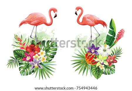 Tropical summer arrangements with flamingos, palm leaves and exotic flowers. Vector illustration.