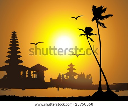 tropical sunset  palm tree