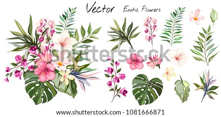 Tropical vector flowers. card with floral illustration. Bouquet of flowers with exotic Leaf isolated on white background. composition for invitation to party or holiday #1081666871