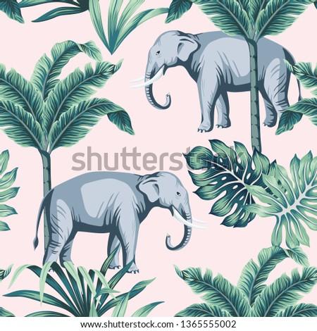 tropical vintage elephant wild