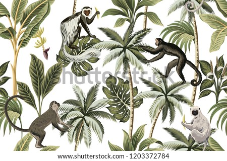 Tropical vintage monkey, palm trees, banana tree floral seamless pattern white background. Exotic jungle wallpaper.