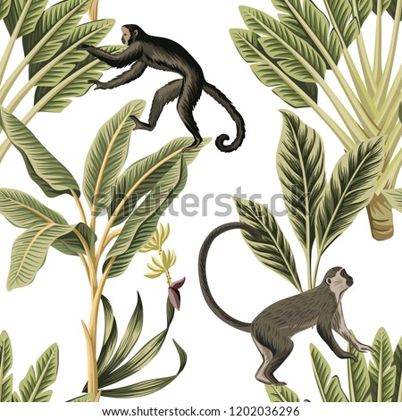 Tropical vintage monkey, palm trees floral seamless pattern white background. Exotic jungle wallpaper.
