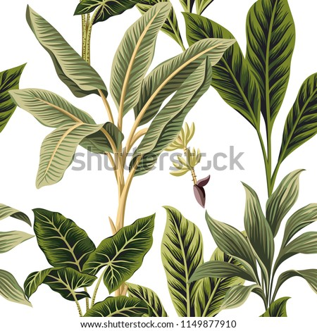 Tropical vintage palm trees, banana and palm leaves floral seamless pattern white background. Exotic jungle wallpaper.