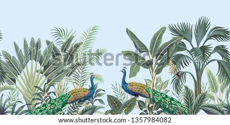 tropical vintage peacock bird