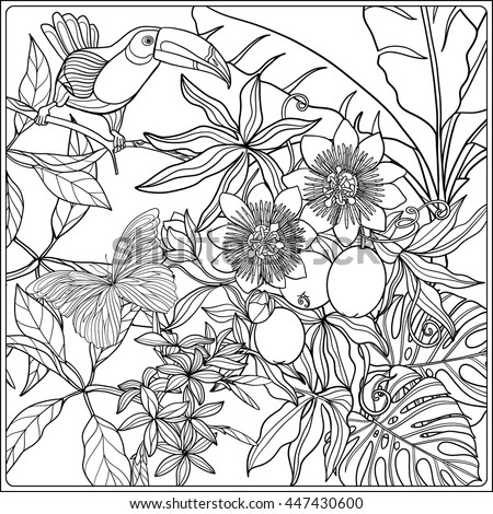 Tropical Garden Collection Coloring Page Book For
