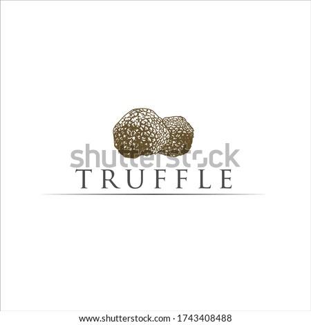 truffle mushroom logo - truffle vector gold Foto stock ©