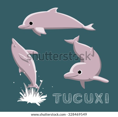tucuxi dolphin cartoon vector