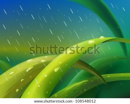 tuft of green grass between
