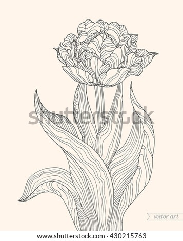 tulip flower  forest plant line
