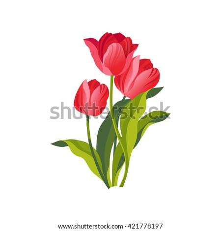 tulip hand drawn realistic flat