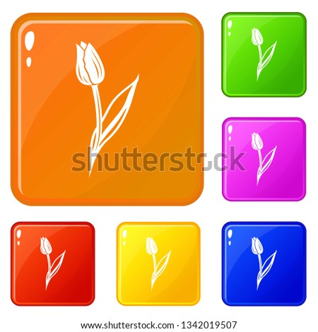 tulip icons set collection