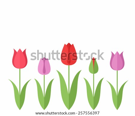 Tulip. Set. Vector illustration EPS10