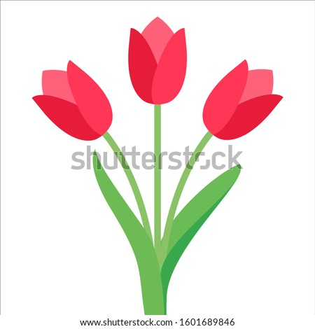 Tulip vector. Tulips. Flat icon of tulip. 8 March. Women`s day. Vector illustration.