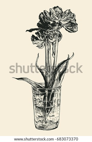 tulips drawing style vector