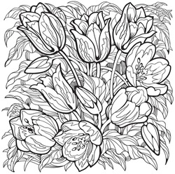 Tulips line art drawing. Flowers coloring page