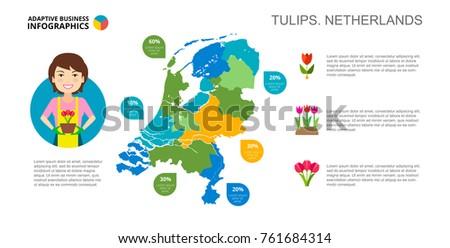 tulips of netherlands slide