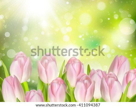 tulips on green background with