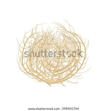 tumbleweed vector illustration