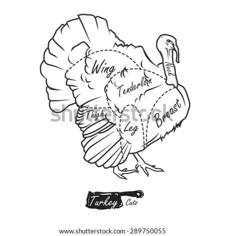 La cuisine turque logo vector cdr download seeklogo for Cuisine turque