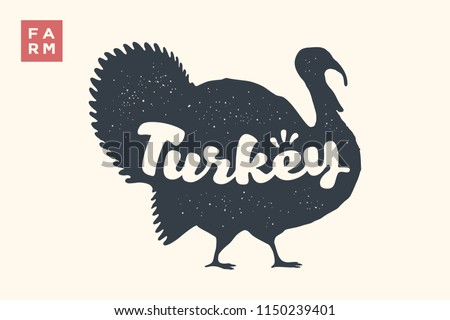 turkey lettering  typography
