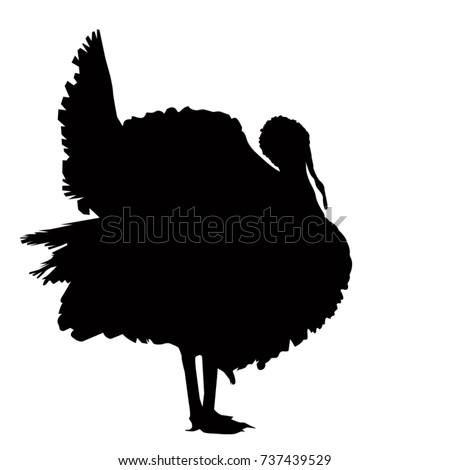 Turkey silhouette, vetor illustration