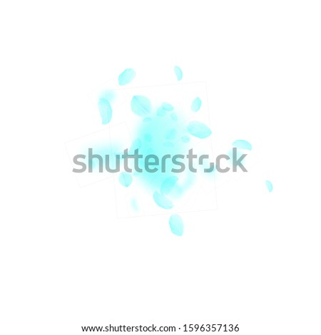 Turquoise flower petals falling down. Actual romantic flowers explosion. Flying petal on white square background. Love, romance concept. Astonishing wedding invitation.