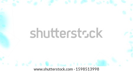 Turquoise flower petals falling down. Charming romantic flowers frame. Flying petal on white wide background. Love, romance concept. Divine wedding invitation.