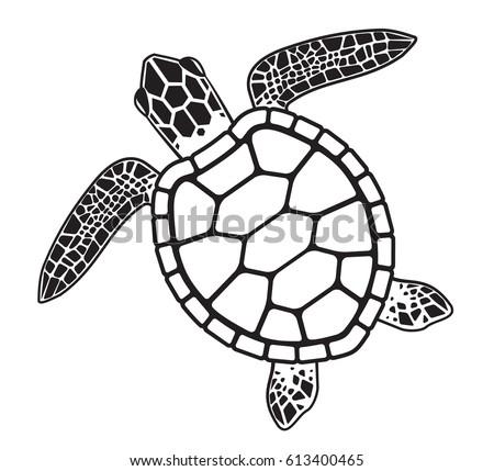 sea turtle image download free vector art stock graphics images rh vecteezy com sea turtle shell vector sea turtle vector art