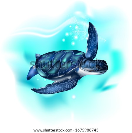 Turtle in the ocean. Sea turtle. Realistic, artistic, colored drawing of a sea turtle on a white background. Wall stickers