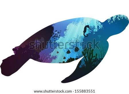 turtle inside the underwater