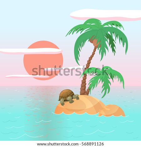 turtle on a beach on a lonely