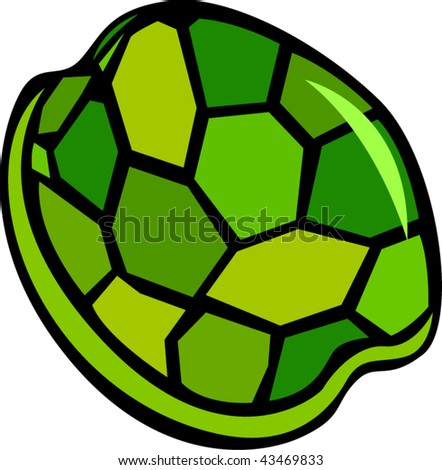 Turtle Shell Vector Turtle Shell