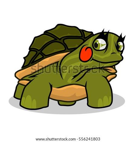 turtle  underwater  wildlife