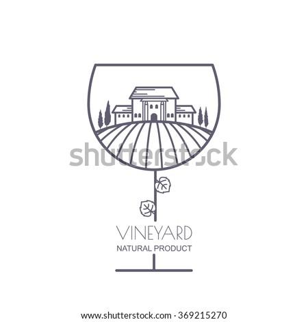 tuscany landscape with vineyard
