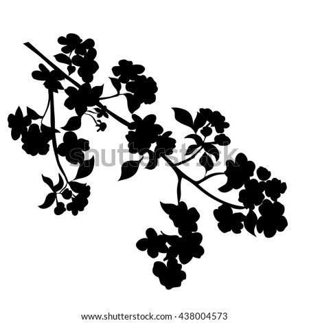twig apple-tree blossoms. Vector illustration. Black Silhouette