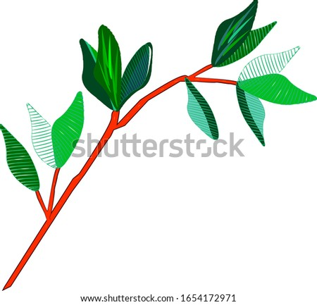twig with leaves isolated on a