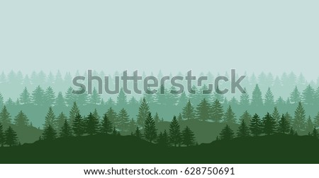 twilight spruce forest trees