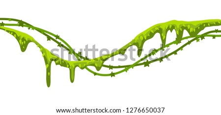 Twisted wild lianas branches banner. Jungle vines plants. Woody natural tropical rainforest.