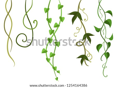 Twisted wild lianas branches set. Jungle vines plants. Woody natural tropical rainforest. Stockfoto ©