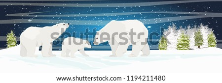 two adult white polar bear and