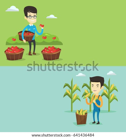 Two agricultural banners with space for text. Vector flat design. Horizontal layout. Farmer holding corn on the background of corn field. Farmer collecting corn. Farmer standing near basket with corn.