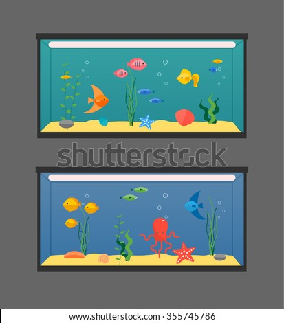 two aquariums set with swimming