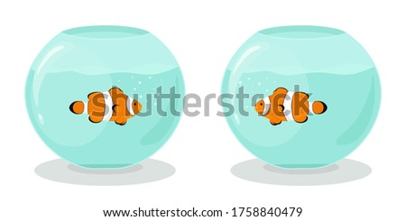 two aquariums with clown fishes