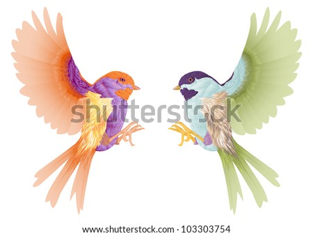 two 	birds flying isolated in white