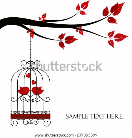 two birds in a cage