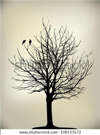 two birds on a dead tree